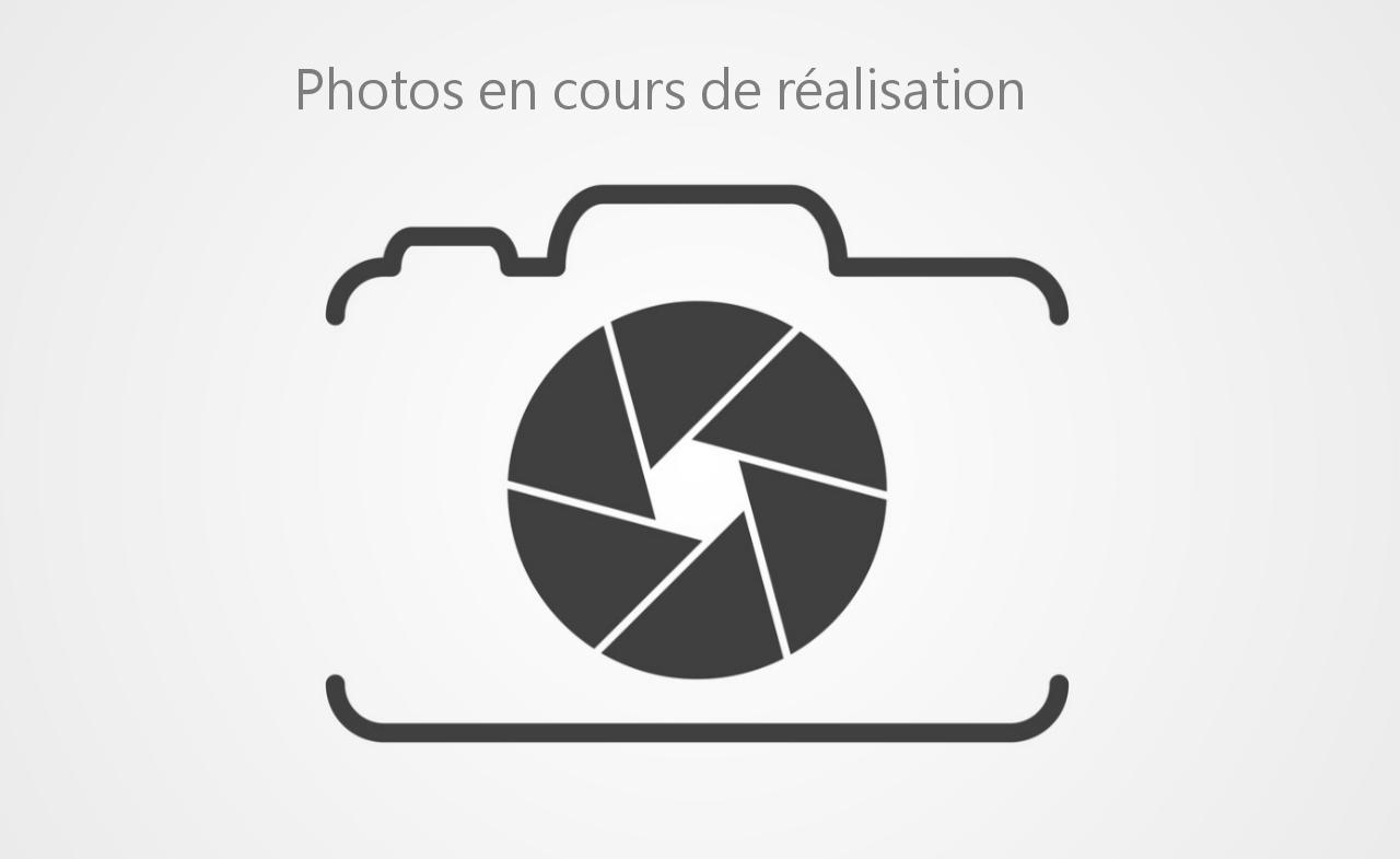 LAMBORGHINI-HURACAN-Huracan Coupé 5.2i V10 - BVR  COUPE LP 610-4